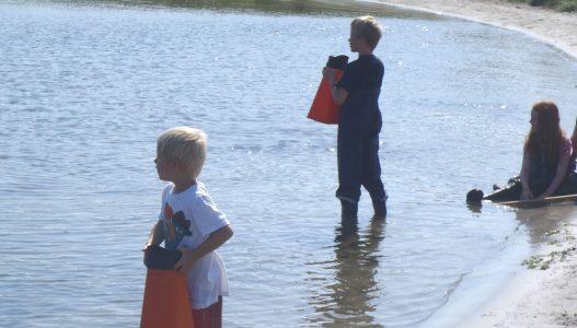 livet på lavt vand