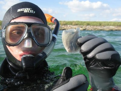 snorkel_ishøj
